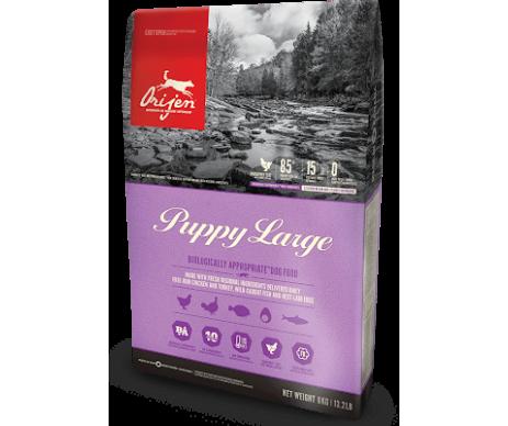 Orijen Puppy Large Breed Сухой корм для щенков крупных пород