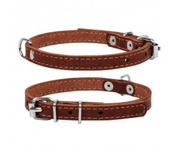 Collar Ошейник одинарный, коричневый
