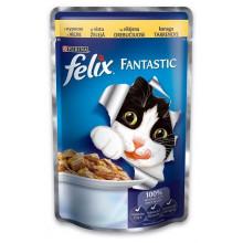 Felix Fantastic Cat Chicken in jelly