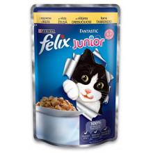 Felix Fantastic Kitten Chicken in jelly