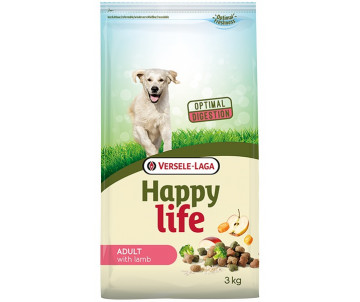Happy Life Adult with Lamb