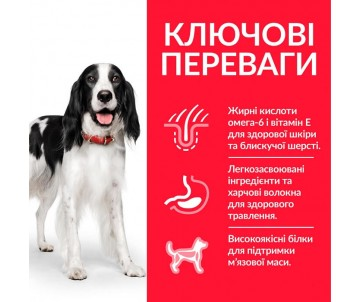 Hills Dog Adult Science Plan Medium Chicken