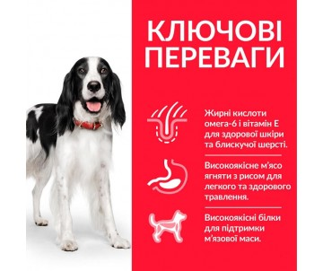 Hills Dog Science Plan Adult Medium Lamb&Rice