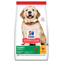 Hills Dog Science Plan Puppy Large Breed Chicken