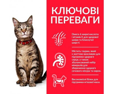 Hills Cat Science Plan Adult Tuna