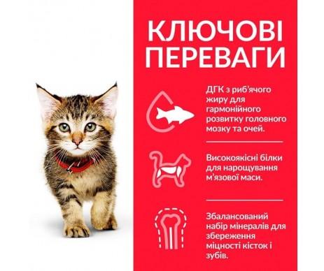 Hills Cat Science Plan Kitten Felain Chicken