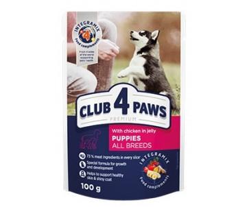 Club 4 Paws Premium Puppies