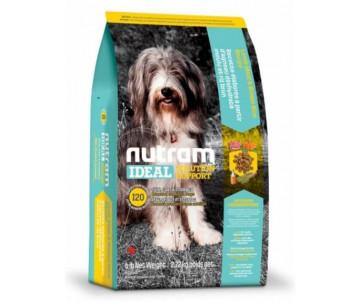 NUTRAM Dog Adult Ideal Solution Support Skin Coat Stomach