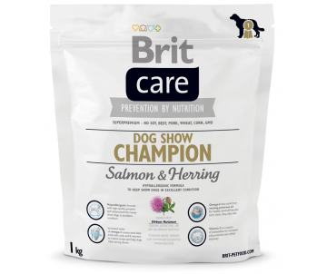 Brit Care Dog Adult Show Champion