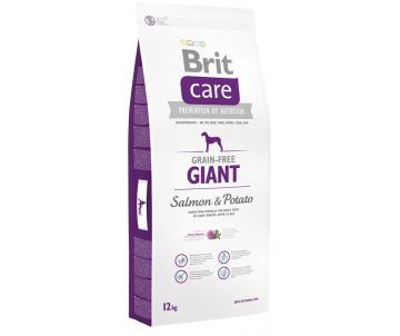 Brit Care Dog Adult GF Giant Salmon Potato