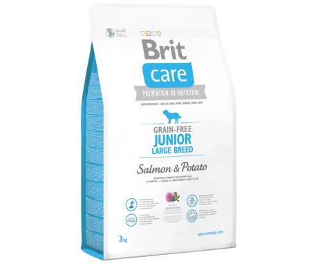 Brit Care Dog Junior GF Large Breed Salmon Potato