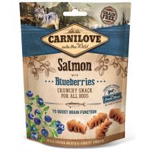 Carnilove Dog Semi Moist Salmon Blueberries