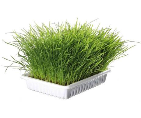 Trixie Soft Grass