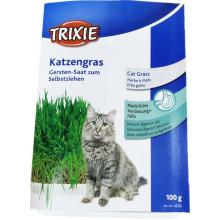 Trixie Katzengras Gersten-Saat zum Selbstziehen