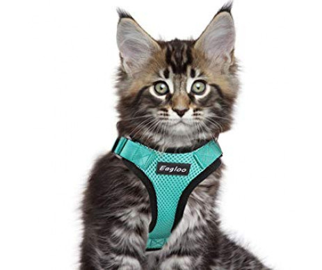 Eagloo Cat Harness шлейка для кота