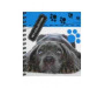 Pet Collection Блокнот для записей на пружинке