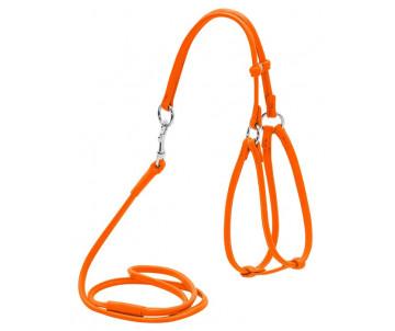 COLLAR WAUDOG Glamour are orange Шлея круглая с поводком, оранжевый