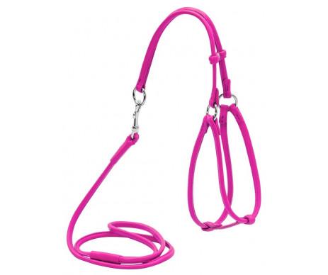COLLAR WAUDOG Glamour are pink Шлея круглая с поводком, розовый