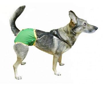 Okey Doggy Гигиенические трусы для животных c подтяжками