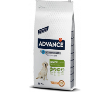 Advance Dog Junior Maxi Chicken Rice