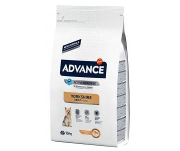 Advance Dog Adult Yorkshire Terrier Chicken Rice