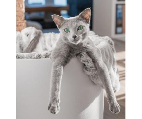 My Kotty FIBI CAT BLANKETFIBI Покрывало для кошек