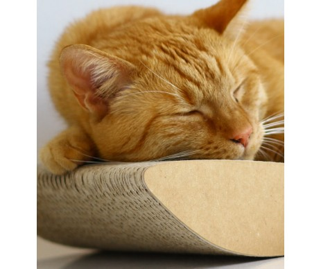 My Kotty TOBI brown Когтеточка для котов