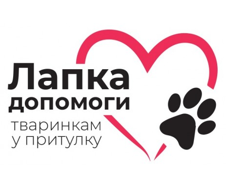 Лапка помощи животным в приюте