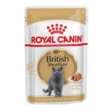 Royal Canin Cat BRITISH SHORTHAIR ADULT Wet