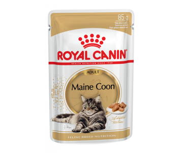 Royal Canin Cat MAINECOON ADULT Wet