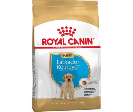 Royal Canin Dog LABRADOR JUNIOR