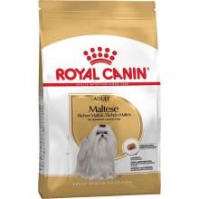 Royal Canin Dog MALTESE ADULT