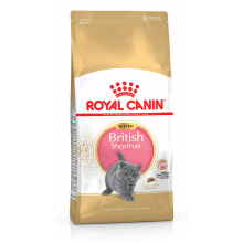 Royal Canin Cat KITTEN BRITISH SHORTHAIR