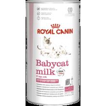 Royal Canin BABYCAT MILK полноценный заменитель кошачьего молока для котят от рождения до отъема