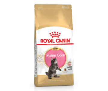 Royal Canin MAINECOON KITTEN