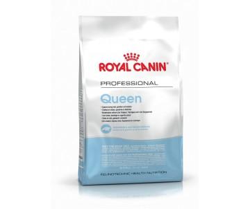 Royal Canin Cat QUEEN