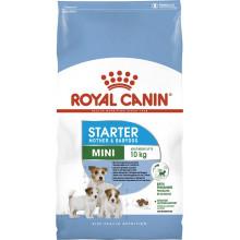 Royal Canin Dog MINI STARTER Puppy