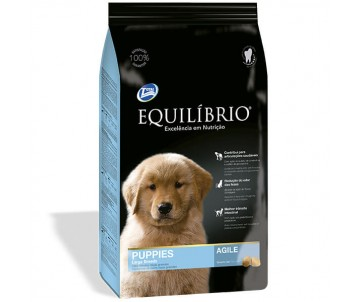 Equilibrio Dog Puppies Large Breeds Agile