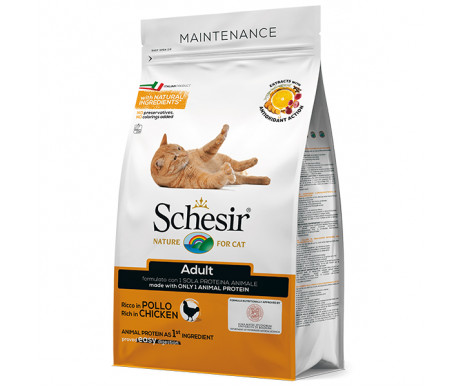 Schesir Cat Adult Chicken